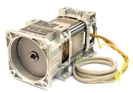 Motor eléctrico sumergible
